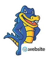 Hostgator website Domain